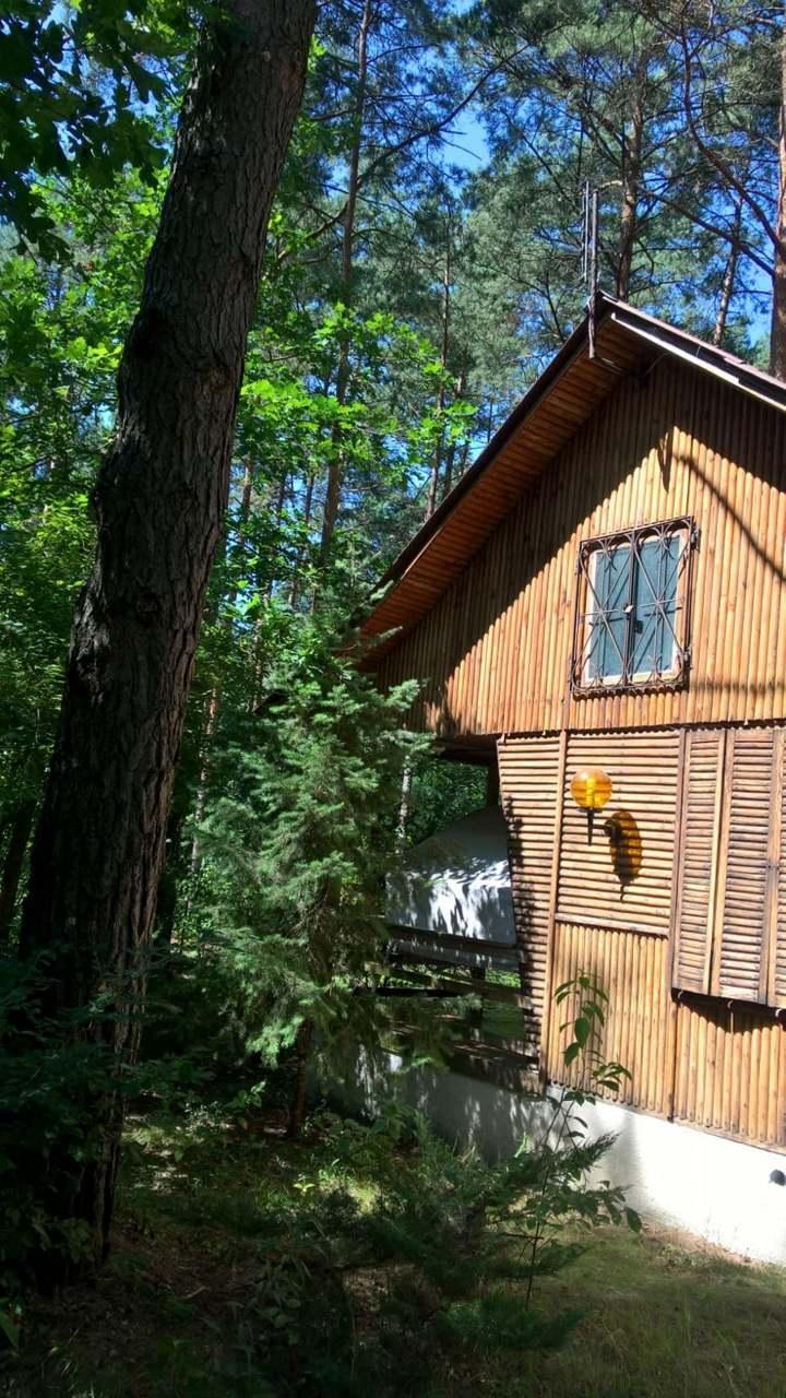 Image La Maison dans les bois, securise, a 25 minute du centre- ville de Varsovie, POLOGNE 1