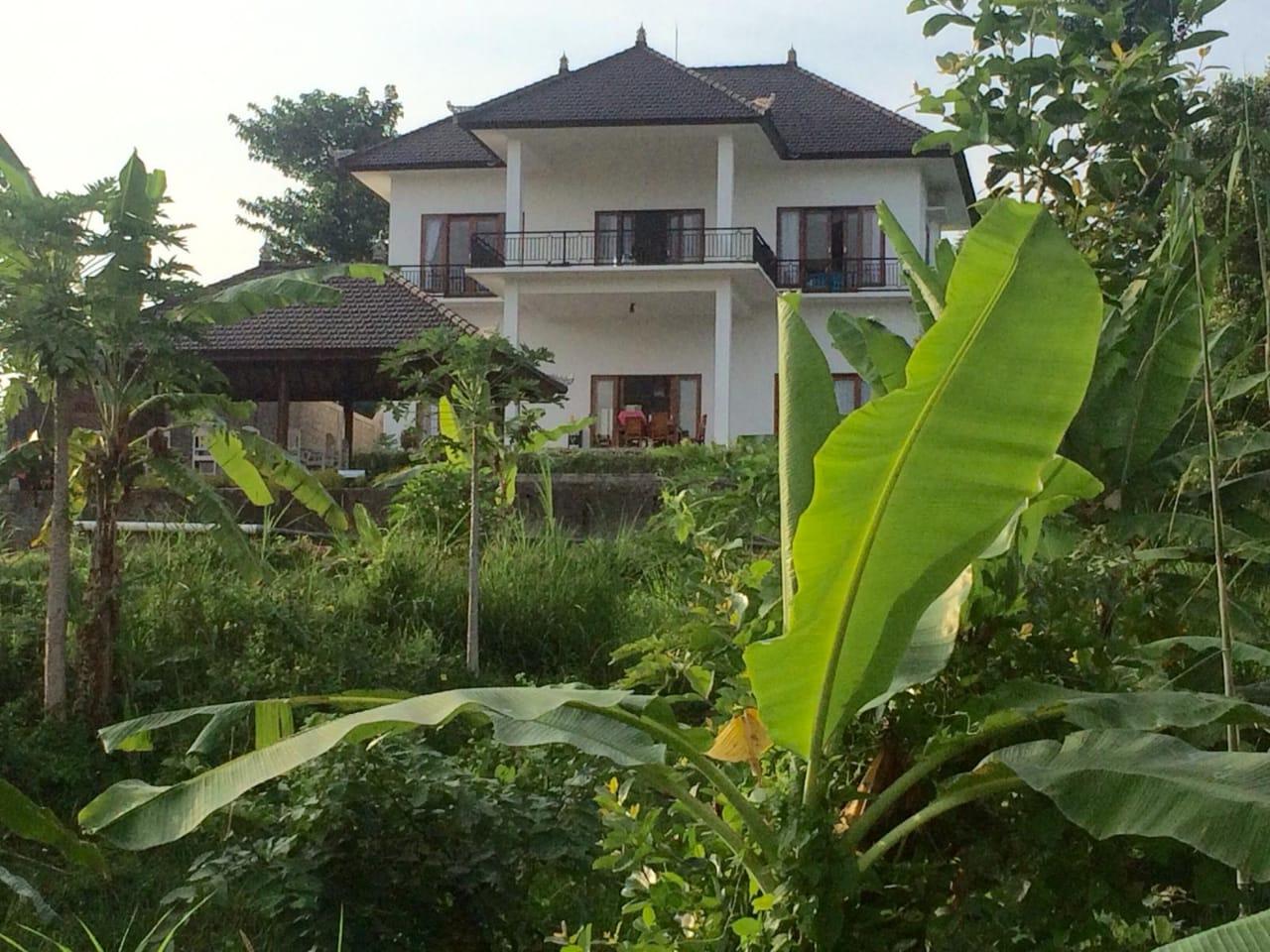 Image Superbe Villa sur les hauteurs de Lovina Beach 1