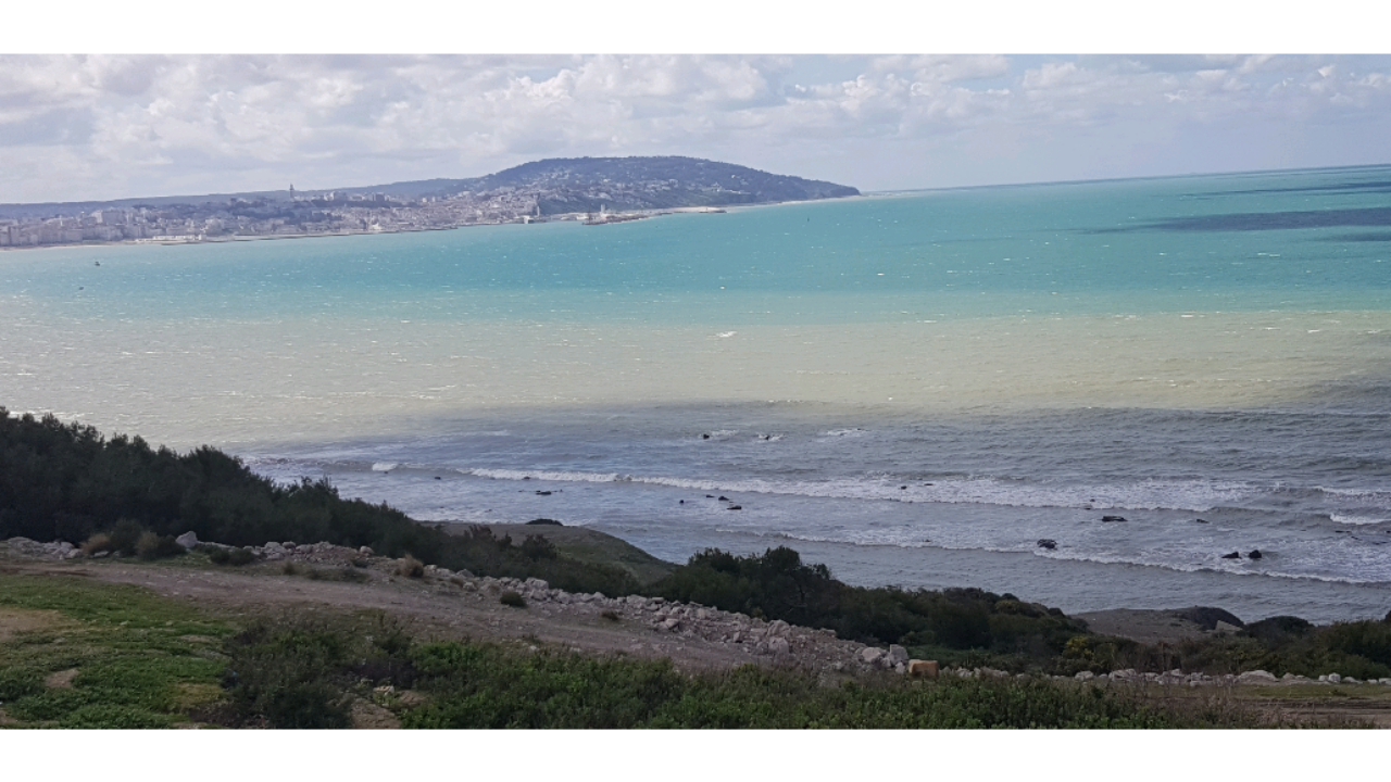 Image Land 4.5 hectares feet in water in Tangier 2