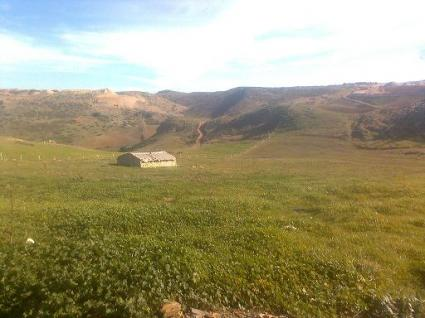 Image Sale farm azrou ifrane 0