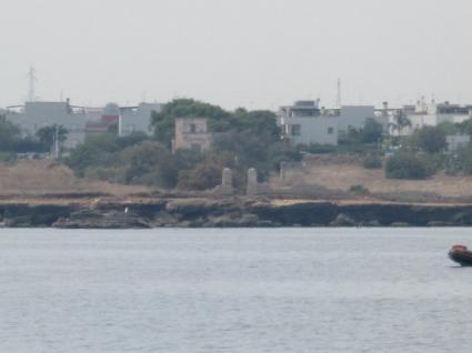 Image Sale prestigious real estate torre a mare bari 0