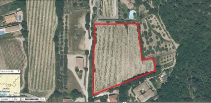 Image Sale land seguret 84110 avignon 0