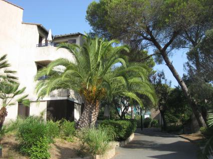 Image Sale apartment saint raphael  0