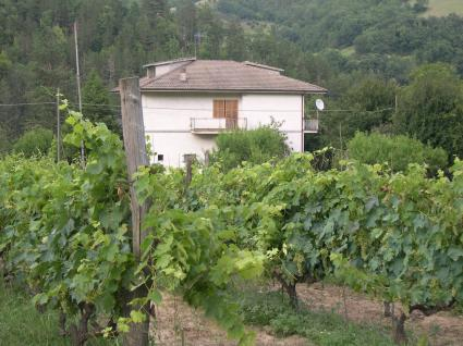 Image Sale villa roccafluvione ascoli-piceno 1