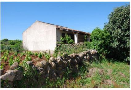 Image Sale farm abbasanta oristano 4
