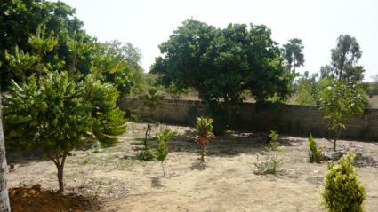 Image Sale villa djilor sine saloum  6
