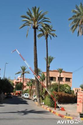 Image Rent villa gueliz marrakech marrakech 1