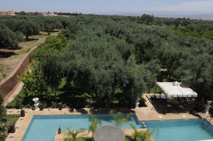 Image Sale farm  marrakech 1