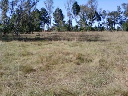 Image Rent land antananarivo  3