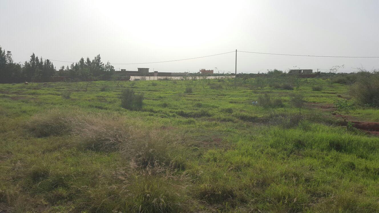 Image Sale villa souiria laqdima safi 1
