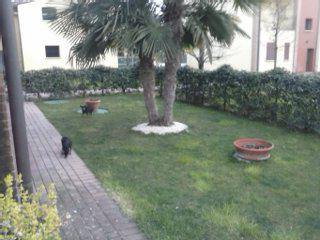 Image Sale villa roverbella  3