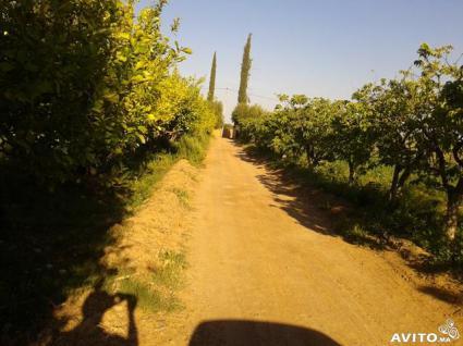 Image Sale farm marrakech  4