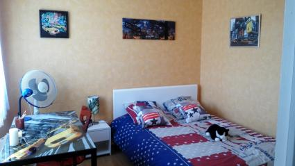 Image Rent apartment lille lille 4