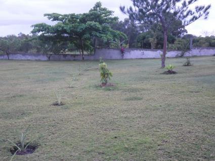 Image Sale house 23km de tamatave  4