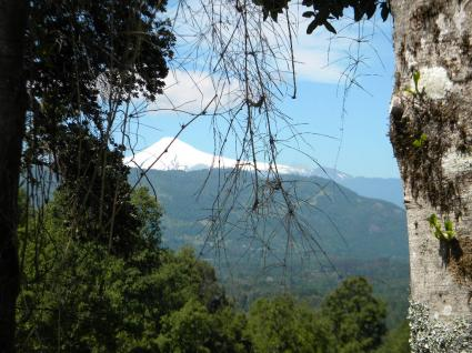 Image Venta chalet panguipulli  8