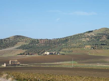 Image Farmhouse Land in Sicily 0