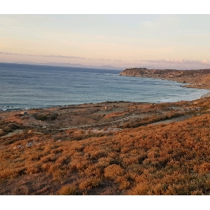 Land 4.5 hectares feet in water in Tangier></noscript>